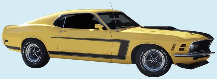 kit Mustang c strip