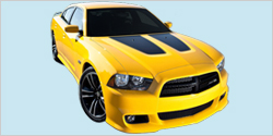 2012-14 Dodge Charger Super Bee Hood Decals
