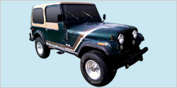 1980 Jeep Golden Hawk CJ