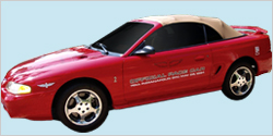 1994 Ford Mustang SVT Cobra Pace Car Decal & Stripe Kit