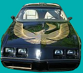1981 Trans Am Turbo Decals And Stripe Kit