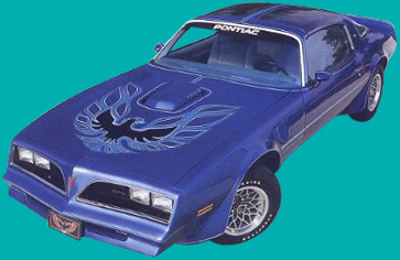 1973 81 Custom Trans Am Special Edition Decals And Stripe Kit