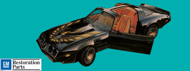 1980 Trans Am Turbo Decals And Stripe Kit