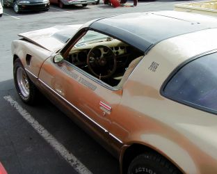 1980 Mecham Macho Turbo Trans Am Stripe Kit By Phoenixgraphix