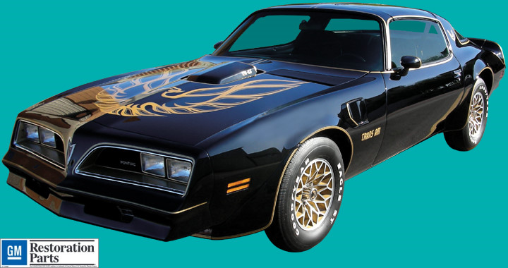 1976 78 Trans Am Decals And Stripe Kit